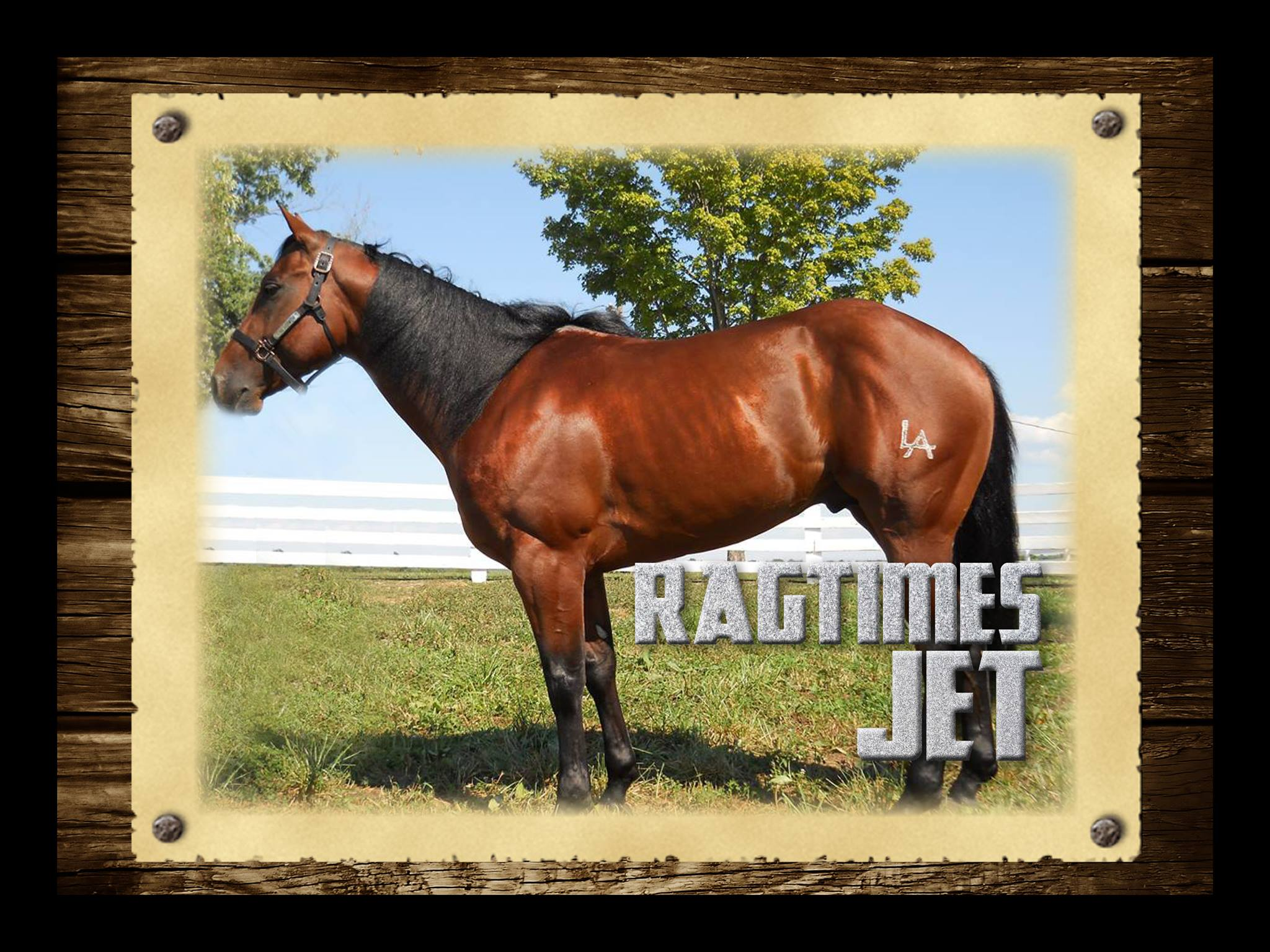 Ragtimes-Jet-Stallions Page photo by Chuck-Givens