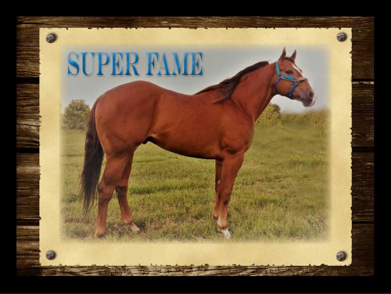 Super-Fame Stallions-Page photo by Chuck-Givens